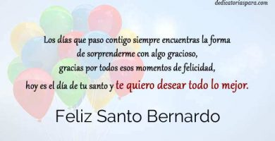 Feliz Santo Bernardo