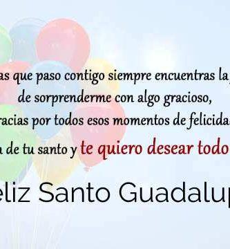 Feliz Santo Guadalupe