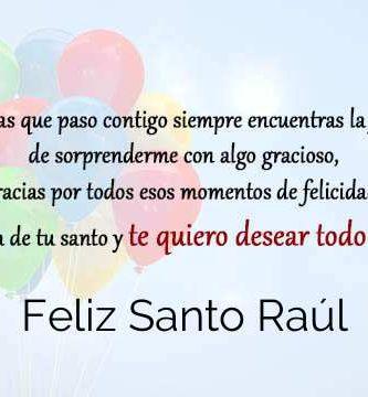 Feliz Santo Raúl