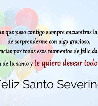 Feliz Santo Severino
