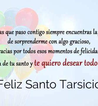 Feliz Santo Tarsicio